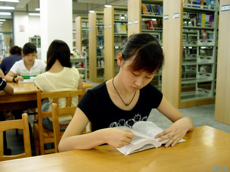 中国教育部:高校高等职业教育专业总数由1170个调减到747个