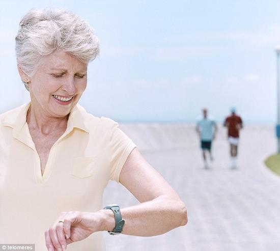 斯坦福大学科学家拨慢老化细胞时钟:向永葆青春迈进