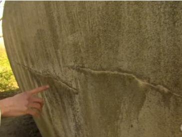 荷兰代尔夫特理工大学微生物学家发明细菌水泥 遇水可自我修复