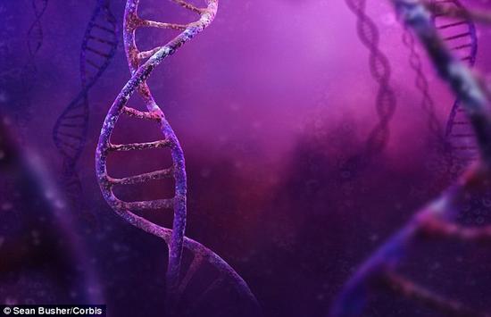 瑞典乌普萨拉科学家发现:只需一晚睡眠不良就可改变基因