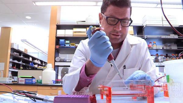 日本利用人工智能大数据Watson抗癌 10分钟将可找到治疗方案