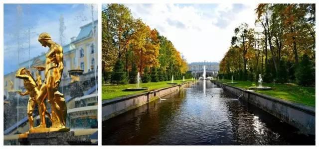 俄罗斯最浪漫的秋色:白桦