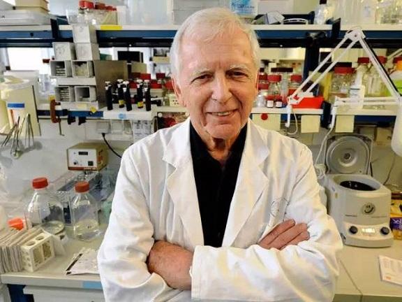 澳州阿德莱德大学:中草药复方苦参杀死癌细胞方面有奇效