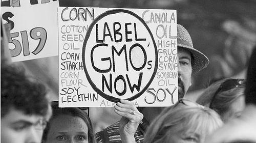 美反对标识转基因食品法案遭否决