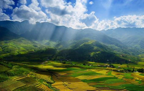 陈岳云:农业的国际比较 ― 中国可以从其他国家学到什么