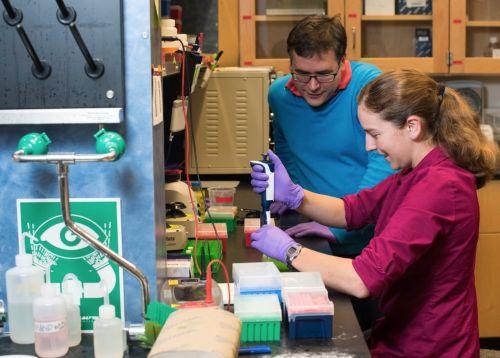 华大与微软研究员创造DNA数据存储新纪录
