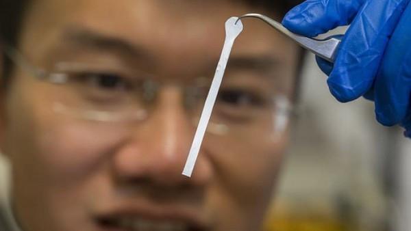 澳大利亚国立大学威廉王开发会害羞的材料 - 材料界的含羞草