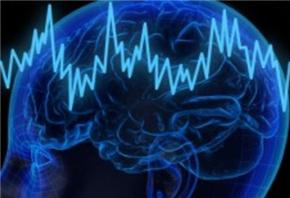 麻省理工学院最新发现:不同学习类型会产生不同脑电波