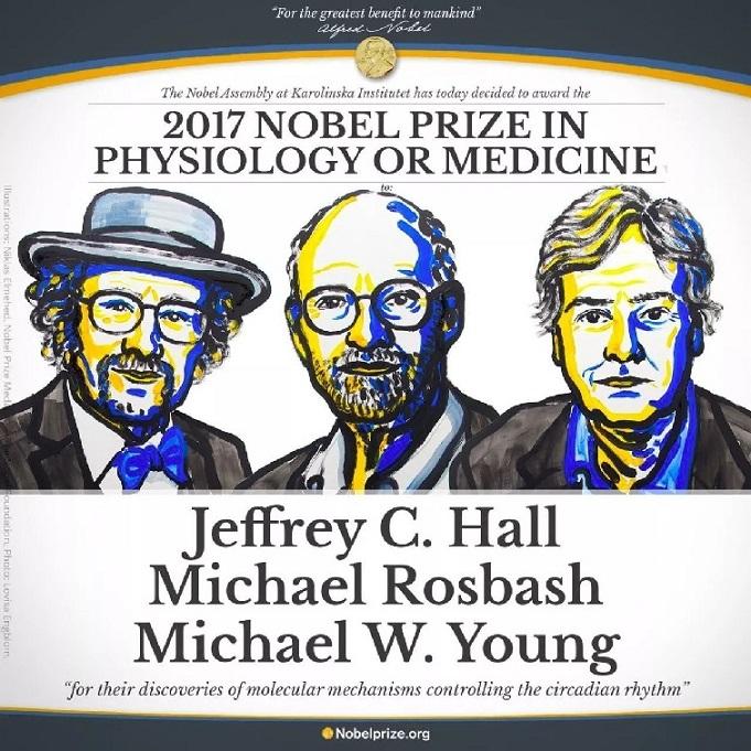 2017年诺贝尔生理学的3位获奖者:发现奠定生物钟关键的机制