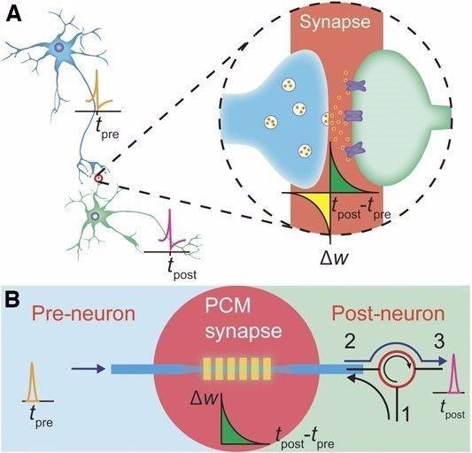 牛津大学研发类脑光子芯片,运算速度超人脑1000倍
