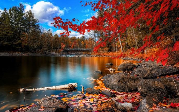 神州揽胜:深秋美景在哪里?