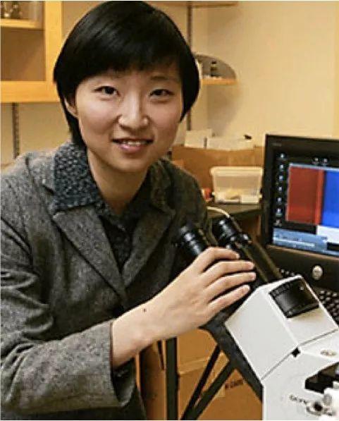 哈佛大学庄小威教授等获1.5亿美元资助,开始揭秘大脑图谱