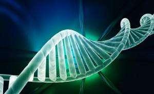 """中国启动""""十万人基因组计划"""""""