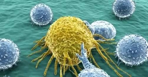 默克辉瑞抗PD-L1药物获美国FDA批准,治疗皮肤癌