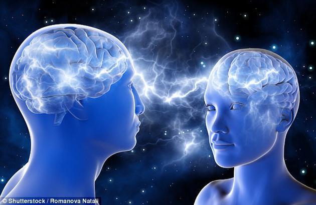 荷兰伊拉斯姆斯大学研究显示:男性大脑更大 但女性大脑效率更高