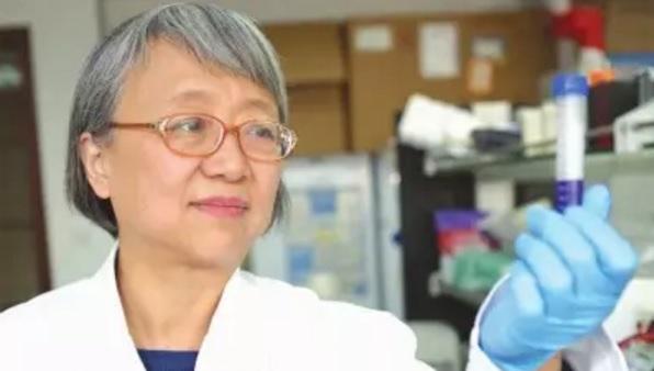 袁钧瑛:美国科学院院士的科研路