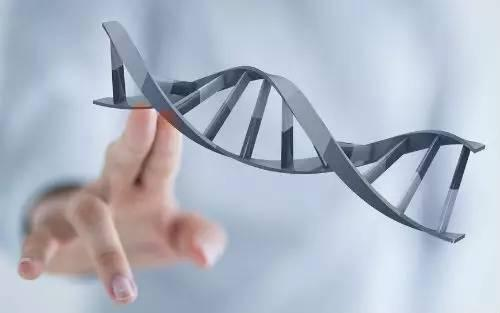 Nature封面:500人队列研究告诉你转移性癌症中的基因变化