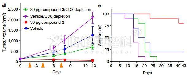 全新化合物抗癌:STING激动剂联合PD-1抗体的临床试验