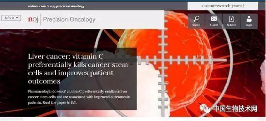 《自然》:王红阳院士团队发现维生素C优先杀死肝癌的肿瘤干细胞