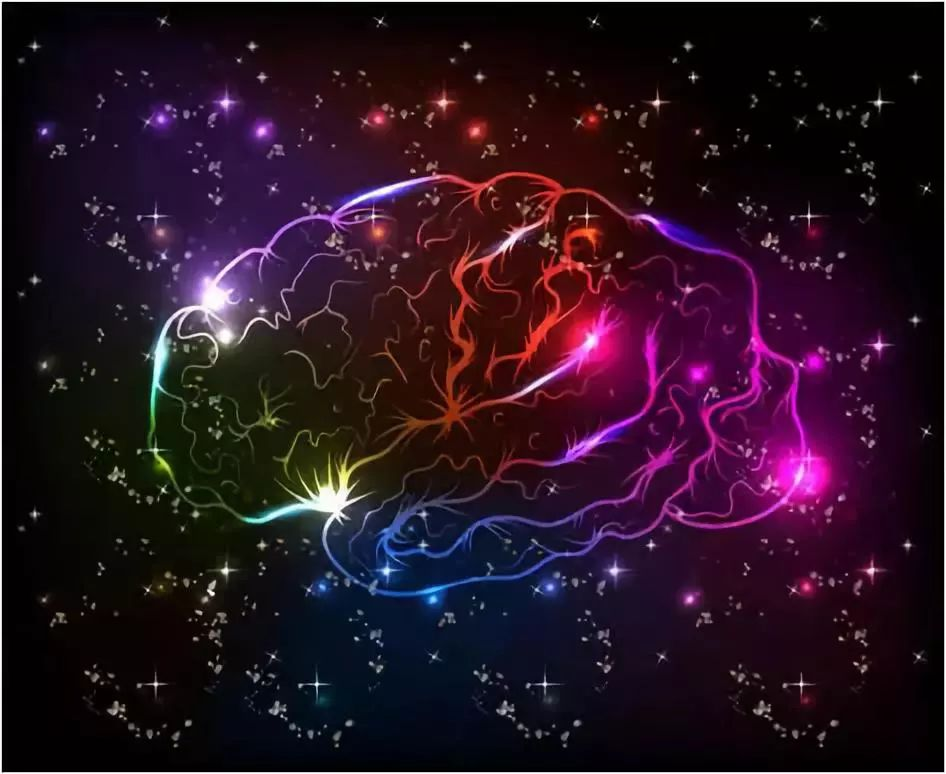 """人工培养的""""大脑""""发出第一声问候:脑电波信号,与人类胎儿一致"""