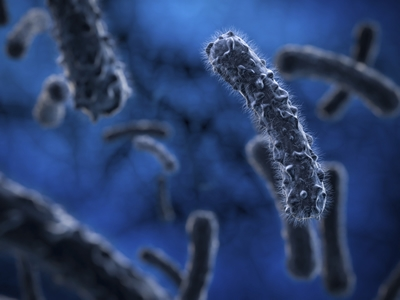 德国马克斯・普朗克胶体与界面研究所揭示超级细菌逃逸机制