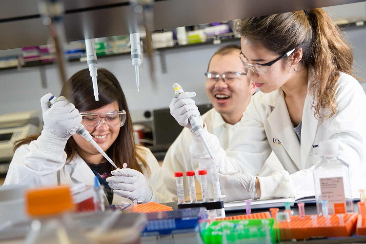 加大圣地亚哥分校(UCSD)张康等发现癌细胞转移新机制和早期筛查方法