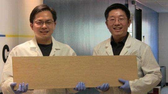 马里兰大学�A裔科�W家�l明「超�木材」可媲美碳�w�S、�材、�合金