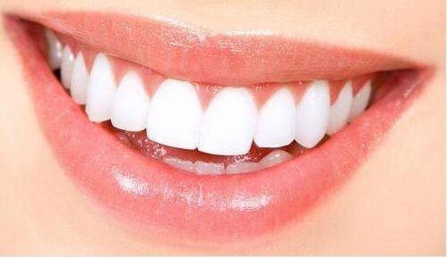 罗格斯大学科学家利用干细胞实现口腔中牙髓再生