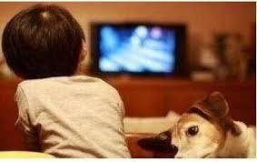 """""""如果你能让孩子在12岁之前不看电视,他们终生都将获益"""""""