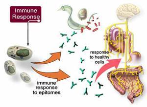 哈佛大学和加州大学圣塔巴巴拉分校新开发出胰岛素口服肠溶胶囊