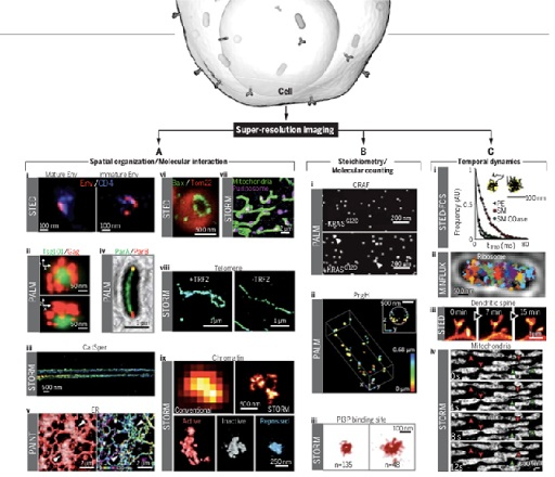 《科学》特刊聚焦五大生物学革命性技术