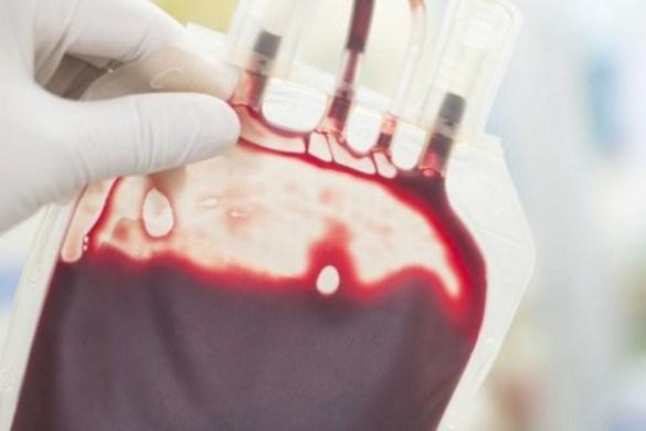 Ambrosia:年�L者�o�}注射年�p人的血��抗衰老挽留青春