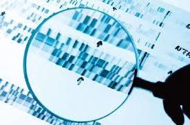 以色列巴伊兰大学: 睡眠可使神经元DNA损伤有效修复