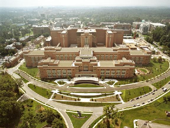 美国国家卫生研究院(NIH):华裔科学家贡献重大 与中国合作至关重要