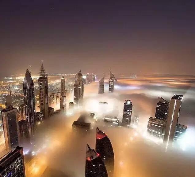 """通知:上海市2019年度""""科技创新行动计划""""人工智能领域项目指南"""