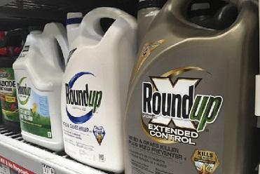 拜耳集�F�r�I生物技术公司孟山都(Monsanto)�≡V �r��20�|元