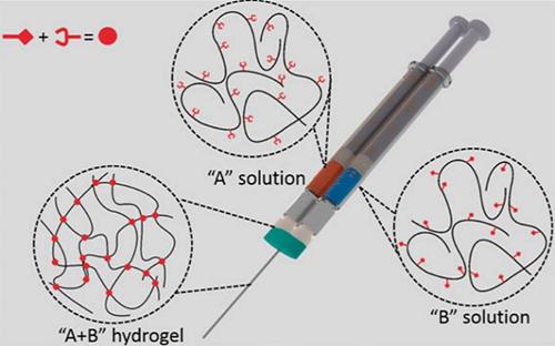 莱斯大学和华盛顿大学研究团队:水凝胶3D打印可快速生成复杂脉管