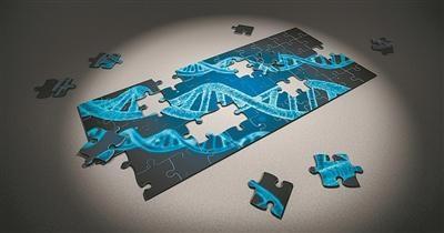 """普林斯顿大学:""""垃圾DNA""""突变可能引起自闭症"""