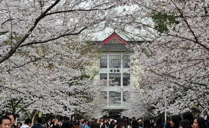 """""""不需要一篇论文就能评上教授"""",江苏这所大学放了个大招"""