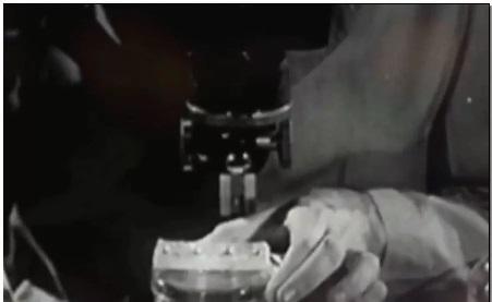 屠呦呦研究新突破:新一代青蒿素战胜耐药性疟原虫和红斑狼疮