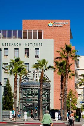 """洛杉矶儿童医院""""芯片上的肾小球""""功能可媲美真正肾脏"""