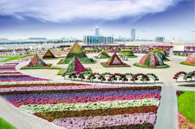 """天安门广场喜迎""""十一""""花团锦簇的美丽景象"""